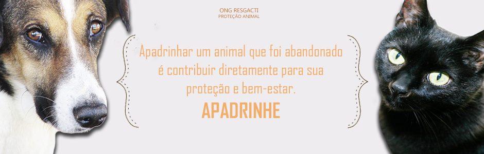 Apadrinhe